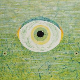 Fein_Crucial Eye_2011
