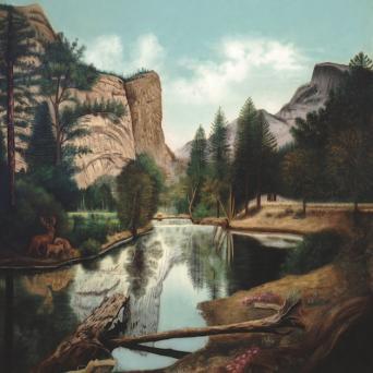 Yosemite Landscape
