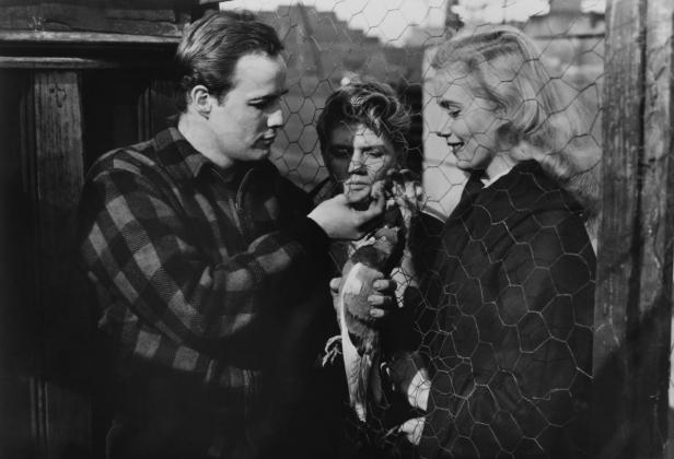 On the waterfront film studies
